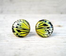 Butterfly wing earrings, Mustard Yellow earring studs