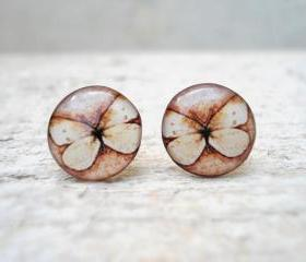 Caramel Brown and Beige Butterfly Earrings, Ear Studs Posts